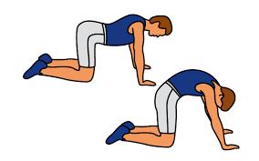 lage rugpijn oefeningen